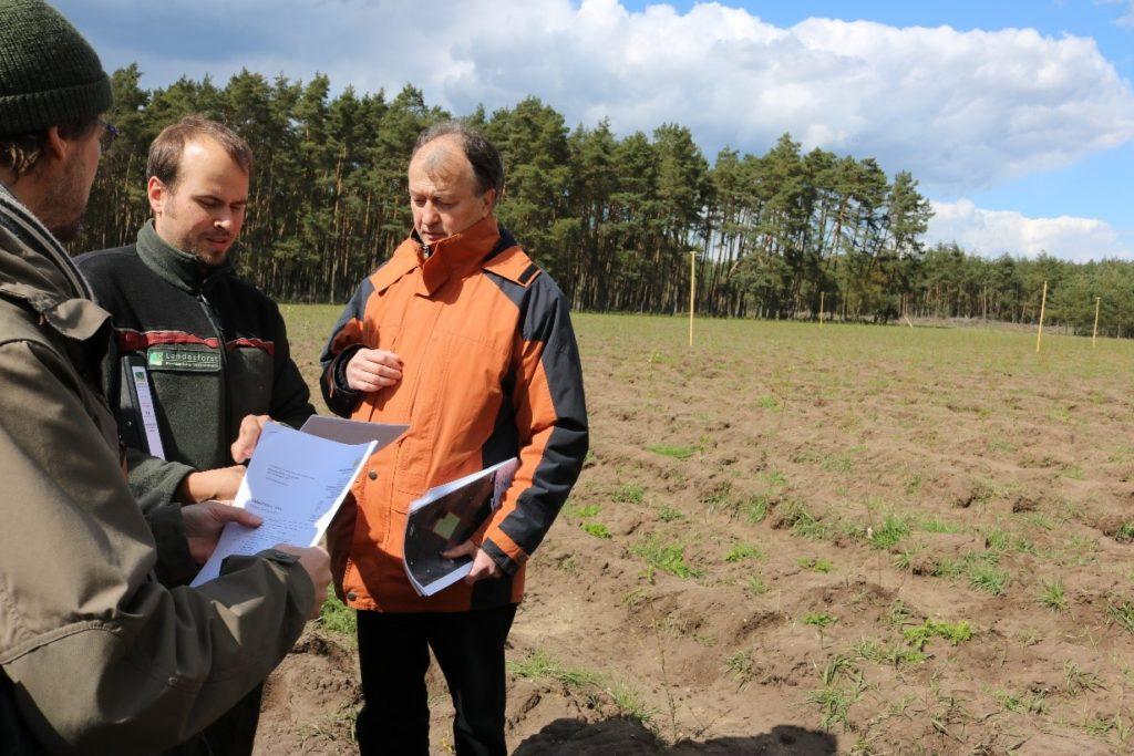 Drei Männer am Waldrand blicken in Unterlagen