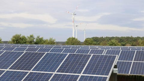Solarpark mit Windrädern und Wald im Hintergrund.