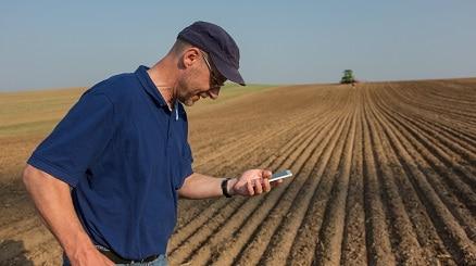 Mann läuft über ein Feld und schaut auf sein Handy