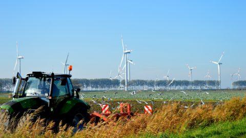 Traktor auf Feld mit Windenergieanlagen im Hintergrund